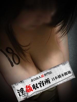 非自由人躾専門店 淫姦収容所日本橋本拠地の収容所設立記念祭 (期間限定)
